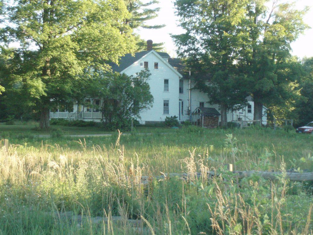 The Cobalt House