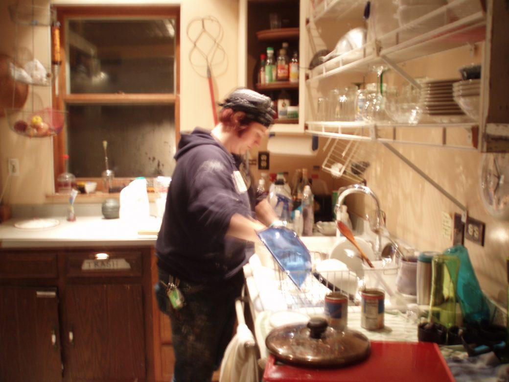 THE DISHWASHER - AMY SHIMKO