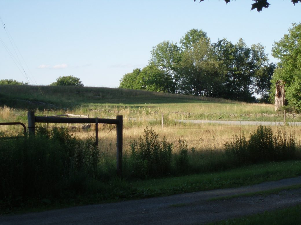 The field across the road from the Cobalt House